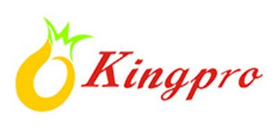 凤梨 kingpro