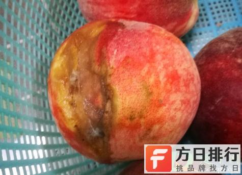 烂桃子怎么做花肥 烂桃子做肥料养花可以吗