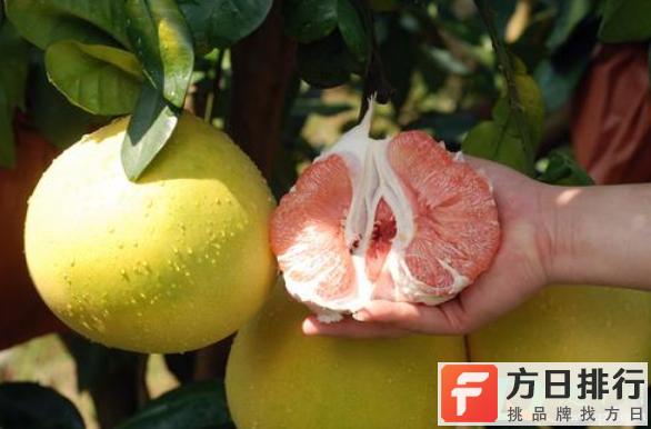 每天吃一个柚子好吗 柚子一次吃一个多吗