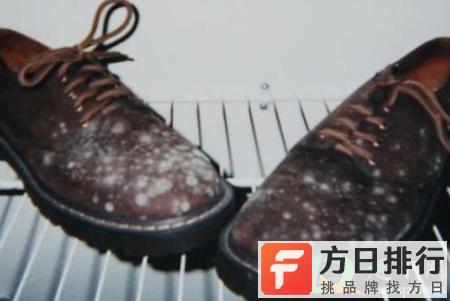 为什么皮鞋会起白的东西 皮鞋长白色霉怎么办