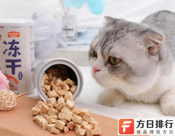 猫会挑食把自己饿死吗 猫咪不吃猫粮怎么办