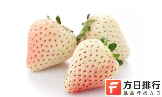 白色草莓是没熟吗 草莓是白色的是不是没熟
