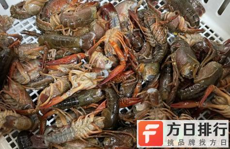 洗碗机洗小龙虾用什么模式 洗碗机洗小龙虾干净吗