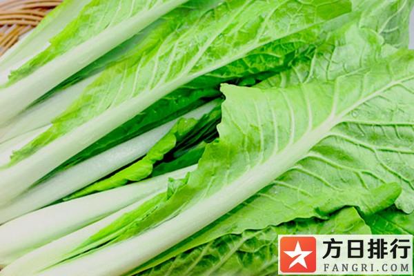 小白菜有助于减肥吗 小白菜的热量是多少