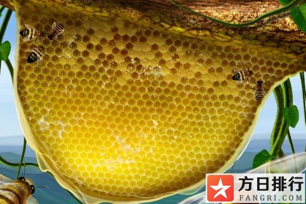 蜂巢蜜可以泡水喝么 蜂巢蜜可以咽下去吗