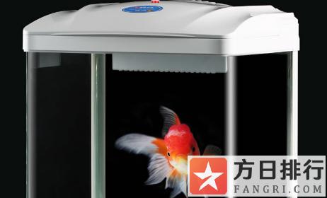 亚克力鱼缸用什么胶水粘 亚克力鱼缸好还是玻璃鱼缸好